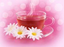 Tea with Chamomile Stock Image
