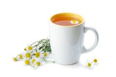 Tea with chamomile royalty free stock photography