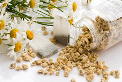 tea chamomile Stock Photography