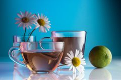 Tea with chamomile tea, on a blue background in a glass transparent cup. Close up royalty free stock photo