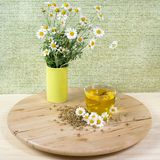 Tea with chamomile flowers Royalty Free Stock Photography
