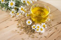 Tea with chamomile flowers Stock Photography