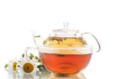 Tea of chamomile flowers Royalty Free Stock Photos