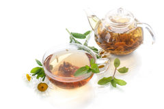 Tea of chamomile flowers Stock Images