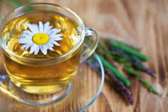 Tea with chamomile and herbs Stock Image