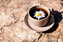 Tea with chamomile on old big stone. Royalty Free Stock Image