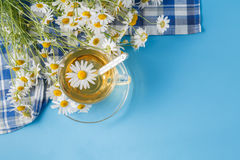 Tea with Chamomile, thermometer and pills Royalty Free Stock Photos