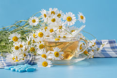Tea with Chamomile, thermometer and pills Stock Photo