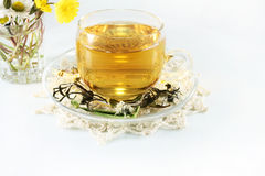 Tea and chamomiles Royalty Free Stock Image