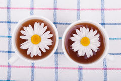 Tea with chamomiles. Royalty Free Stock Photography