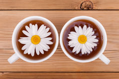 Tea with chamomiles. Stock Image