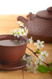 Tea and cherry flowers Royalty Free Stock Images