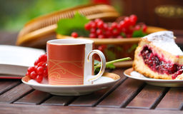 Tea with the cherry pie. Tea with book and cherry pie outdoors. Autumn time royalty free stock photos