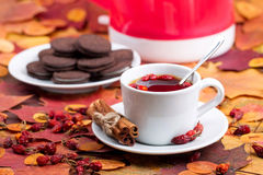 Tea with chocolate cookies on a background of autumn leaves Royalty Free Stock Image