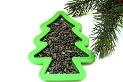Tea Christmas. A green fur-tree shape with green tea and a Christmas tree branch Stock Image