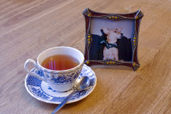 Herbal tea and photo-frame. A cup of tea and a photo of a pet dog Stock Photos