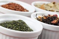 Tea collection - bancha or sencha green tea Stock Photos