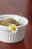 Tea collection - chamomile Stock Photography