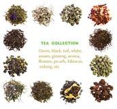 Tea collection Royalty Free Stock Photos
