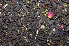 Tea collection Royalty Free Stock Image