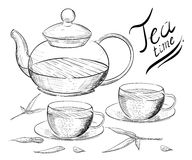 Tea collection. Hand draw  illustration. Tea time. tea cup, teapot Stock Photos