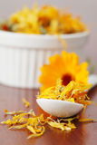 Tea collection - pot marigold Royalty Free Stock Image