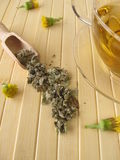 Tea with coltsfoot Royalty Free Stock Images
