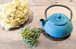Tea concept Royalty Free Stock Photos