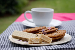 Tea and cookies. Plate of cookies with cup and saucer Stock Photos