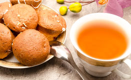 Tea with cookies Royalty Free Stock Image