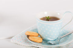 Tea with cookies Stock Photos