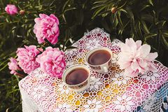 Tea in country style in summer garden. Two cups of black tea on handmade crocheted vintage lacy tablecloth and blooming peony. Tea in country style in summer royalty free stock image