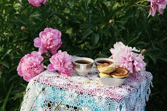 Tea in country style in summer garden. Two cups of black tea and pancakes on handmade crocheted vintage lacy tablecloth and. Tea in country style in summer stock images