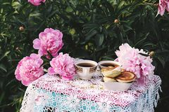 Tea in country style in summer garden. Two cups of black tea and pancakes on handmade crocheted vintage lacy tablecloth and. Tea in country style in summer stock photos