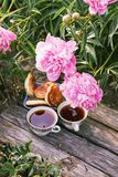 Tea in country style in summer garden in the village. Two cups of black tea and pancakes on wooden boards and blooming peony. Tea in country style in summer stock photography