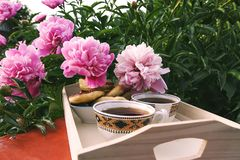Tea in country style in summer garden in the village. Two cups of black tea on wooden tray and blooming peony flowers in sunlight. Tea in country style in summer stock photo