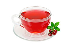 Tea with cranberries in a glass cup Stock Photos
