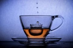 Tea creating splash in a cup royalty free stock images