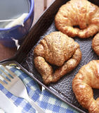 Tea and croissants closeup. Tea breakfast with croissant closeup in leather nest Stock Photography
