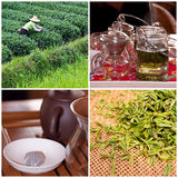 Tea culture and degustation collage Stock Images
