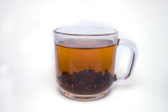 Tea cup. Glass cup of black tea isolated royalty free stock photo