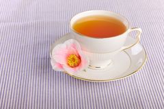 Tea cup Stock Photo