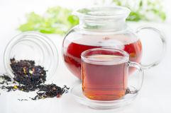 Tea in cup Royalty Free Stock Images
