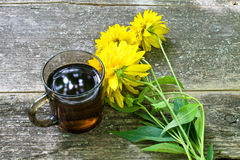 Tea cup. With yellow flowers  in garden Stock Images