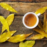 Tea cup in autumn leeves Stock Images