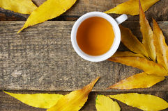 Tea cup in autumn leeves Royalty Free Stock Photography