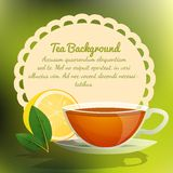 Tea cup background Stock Image