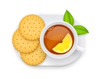 Tea cup and biscuit on plate. Traditional hot drink. Vector illustration.