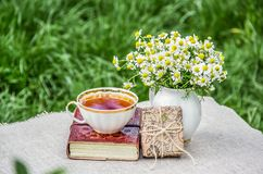 Tea cup and book. Summer picnic on the grass. Bouquet of chamomiles and gift box. royalty free stock photos