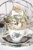 Tea cup with decoration Stock Photos